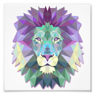 Colorful Lion Kodak Professional Photo Paper