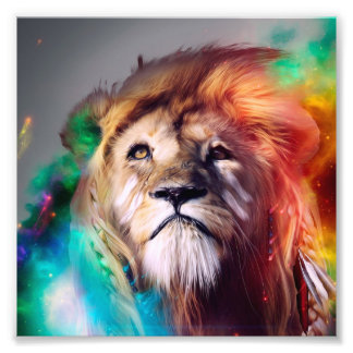 Colorful lion looking up Feathers Space Universe Photo