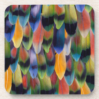 Colorful lovebird parrot feathers coaster