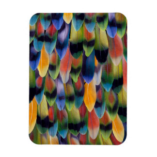 Colorful lovebird parrot feathers rectangular photo magnet