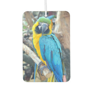 Colorful Macaw Parrot Car Air Freshener