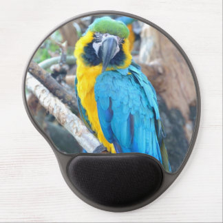Colorful Macaw Parrot Portrait Gel Mouse Pad