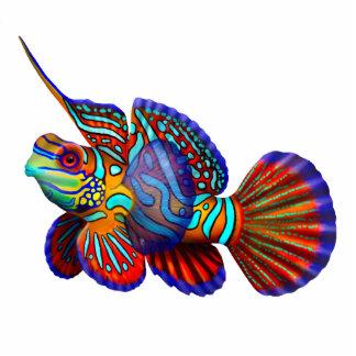 Colorful Mandarin Fish Pin Photo Sculpture Badge