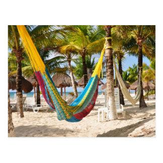 Colorful Mayan Hammock Cozumel Mexico Postcard