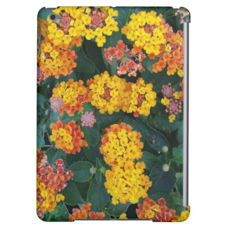 Colorful Million Bells iPad Air case
