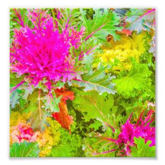 Colorful Nature Print Photo