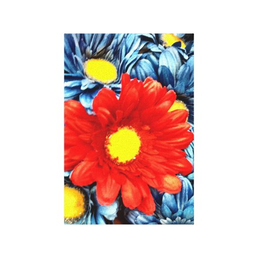 Colorful Orange Red Blue Gerber Daisies Flowers Canvas Print