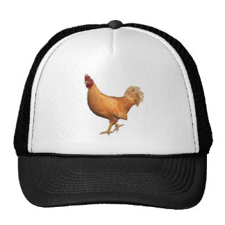 Colorful Orange Rooster Trucker Hat