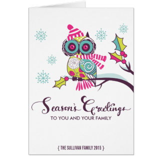 Colorful Owl and Snowflakes Holiday Card