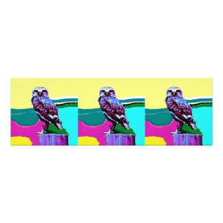 Colorful Owl on a post Posterization Photo