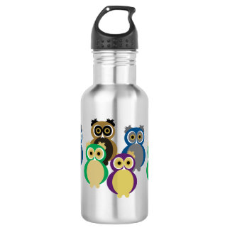 Colorful Owls 532 Ml Water Bottle
