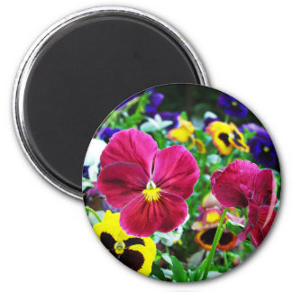 Colorful Pansies 6 Cm Round Magnet