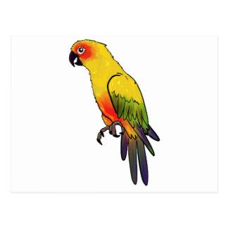 Colorful Parrot Postcard