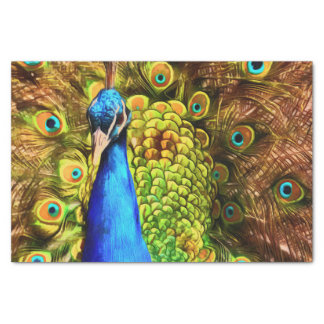 Colorful Peacock Tissue Paper