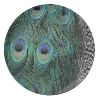 Colorful Peafowl Decor Party Plate
