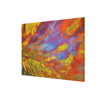 Colorful Petrified Wood close-up Canvas Print