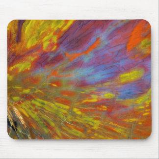 Colorful Petrified Wood close-up Mouse Pad