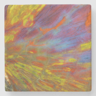 Colorful Petrified Wood close-up Stone Coaster