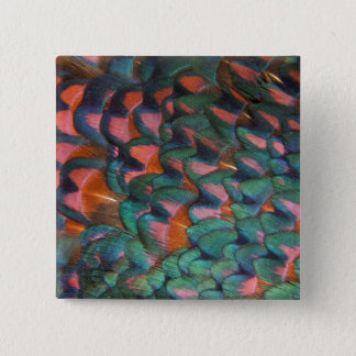 Colorful Pheasant Feathers Abstract 15 Cm Square Badge