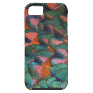 Colorful Pheasant Feathers Abstract iPhone 5 Covers