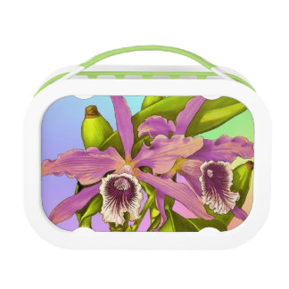 Colorful Pink Orchids Lunch Box