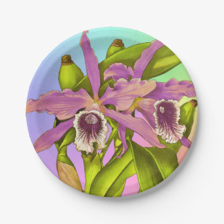 Colorful Pink Orchids Paper Plate