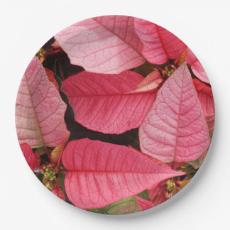 Colorful Pink Poinsettia Christmas Floral Paper Plate