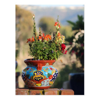 Colorful Pottery with Flowers [Still Life] Postcard