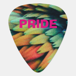 Colorful PRIDE Rainbow of Bird Feathers Plectrum