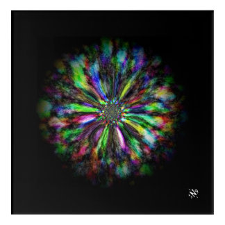 Colorful psychedelic sketch of a flower acrylic wall art
