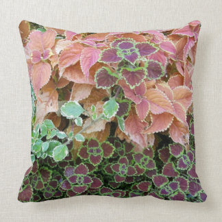 Colorful Rainbow Coleus Plants Photograph Cushion