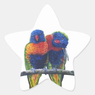 Colorful Rainbow Lorikeets parrots Star Sticker