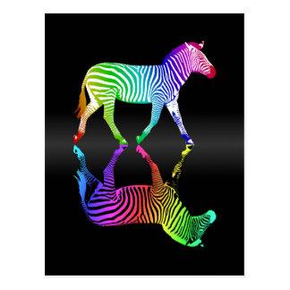 Colorful Rainbow Zebra Reflection Postcard