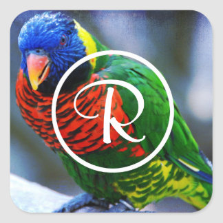 Colorful red green blue bird photo custom monogram square sticker