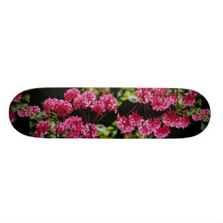 Colorful Rhododendrons, Quebec, Canada Custom Skate Board