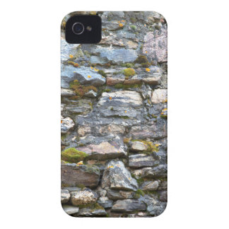 Colorful Rocky Mountain Nature Wall Case-Mate iPhone 4 Case