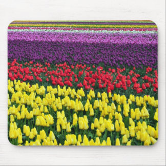 Colorful rows of spring tulips mouse pad