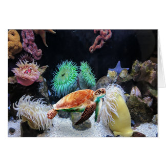 Colorful Sea life Note Card