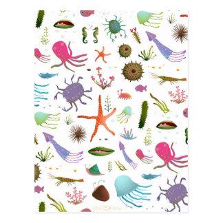 Colorful Sea Life Postcard