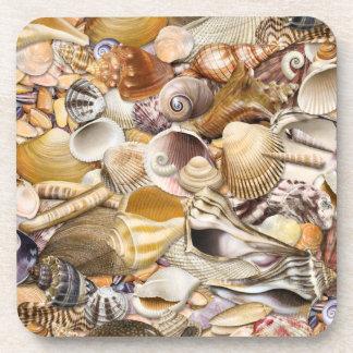 Colorful Seashells Coasters