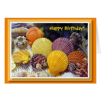 Colorful Shells Birthday Card