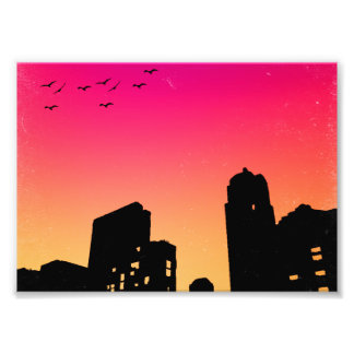 Colorful Sky w/ Birds and Buildings Silhouette Art Photo