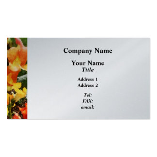 Colorful Snapdragons  - Platinum Finish Pack Of Standard Business Cards