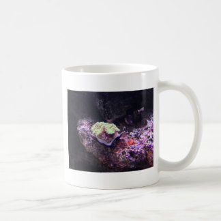 Colorful Soft Coral And Live Rocks Coffee Mug