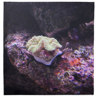 Colorful Soft Coral And Live Rocks Napkin