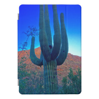 Colorful Southwest Desert Saguaro Ipad Smart Cover