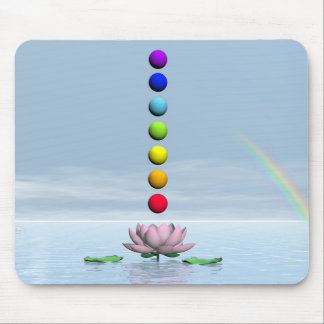 Colorful spheres for chakras upon beautiful lily f mouse pad