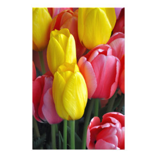 Colorful spring tulips bouquet stationery