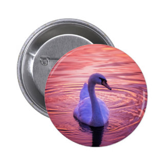 Colorful Sunset Swan 6 Cm Round Badge