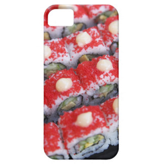 Colorful sushi for sale case for the iPhone 5
